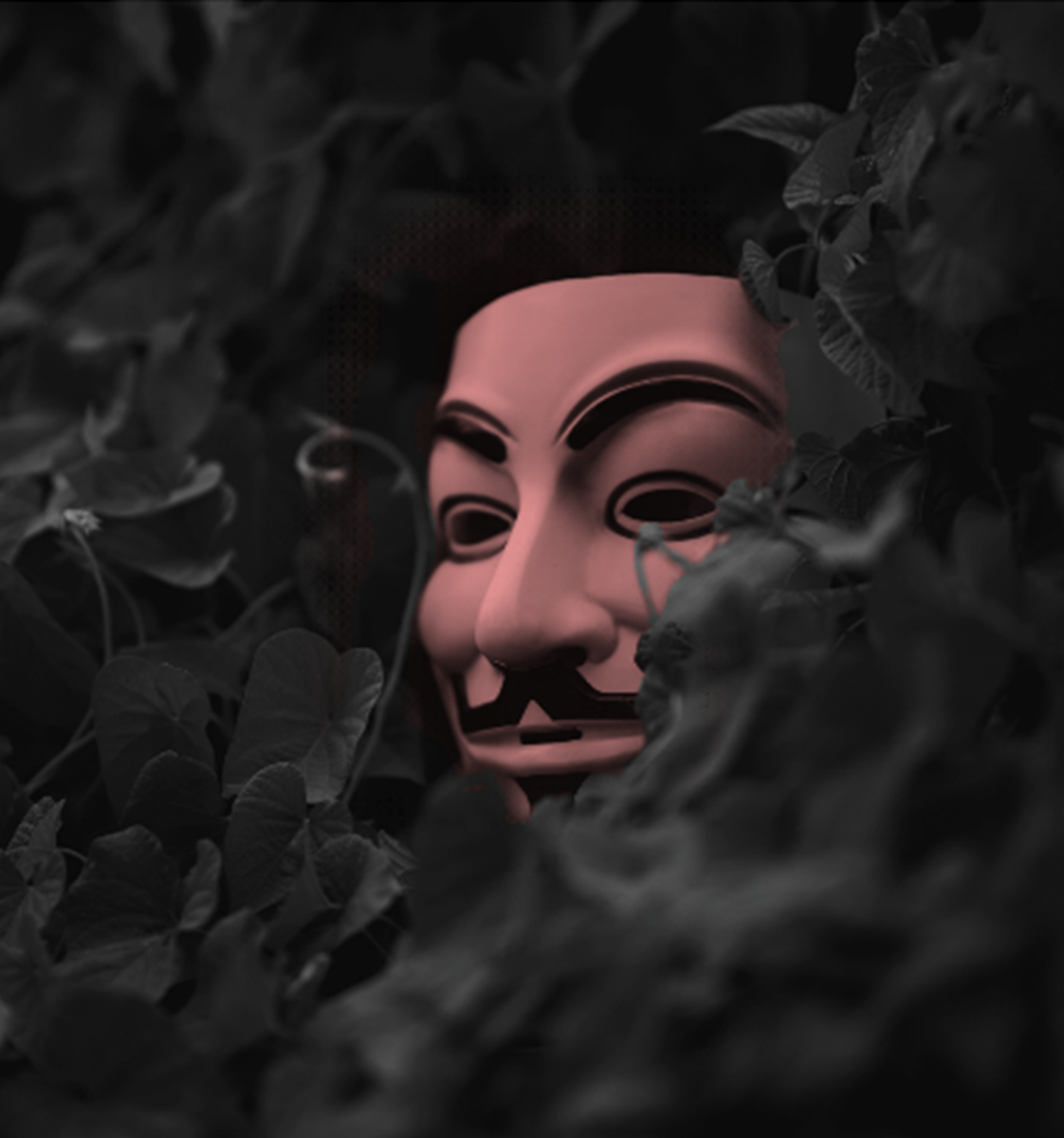 ¿Su empresa cuenta con ciberseguridad?